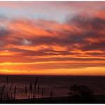 26. Veebruar 2020 - 6:56 - Petit matin venteux ( bastia ) , avec l ile de Montecristo sur la ligne d'horizon .
