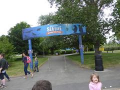 Weymouth 2019 - 008 SEA LIFE Centre Adventure Park