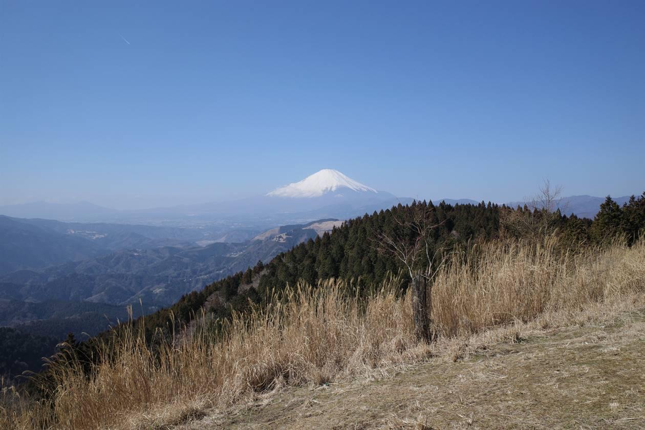 高松山山頂から眺める富士山