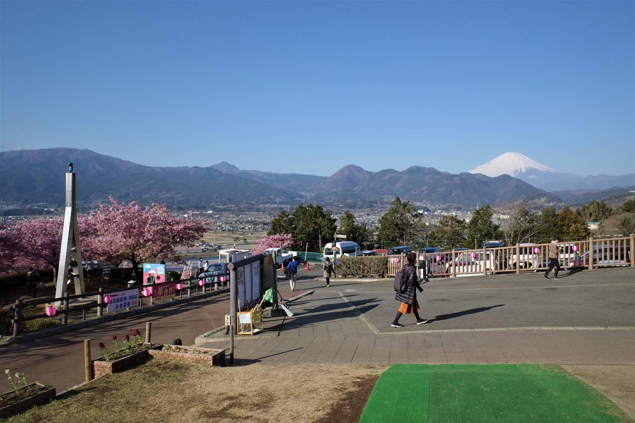 松田山から眺める富士山