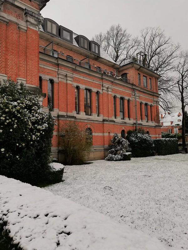 Nieve en Lovaina 3
