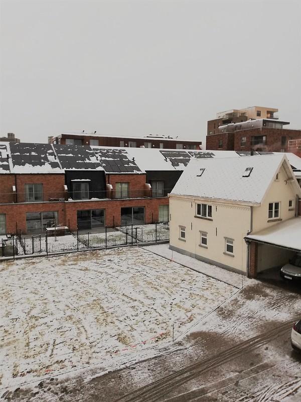 Nieve en Lovaina 2