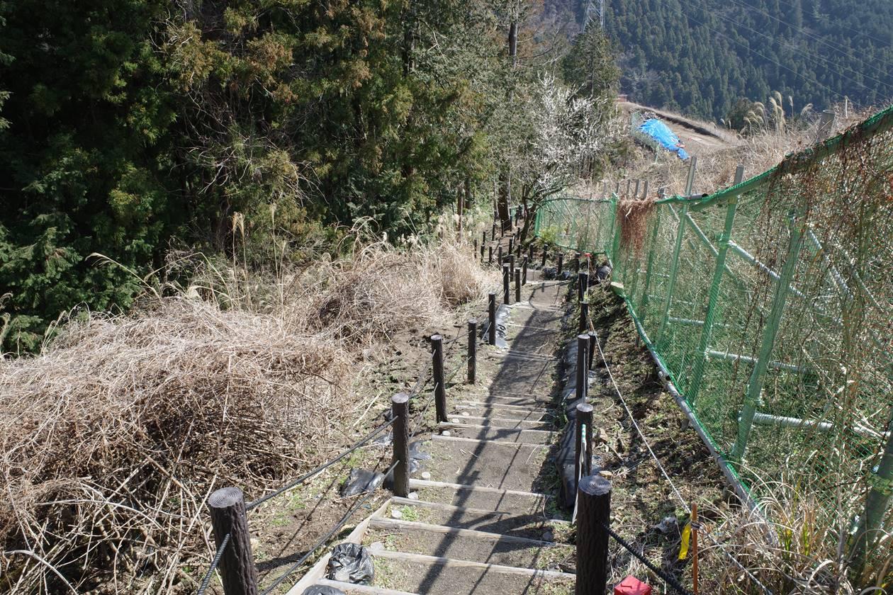 高松山から山北駅へ下山