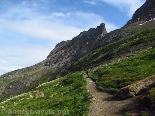The Highline Trail beyond Haystack Pass, Glacier National Park, Montana