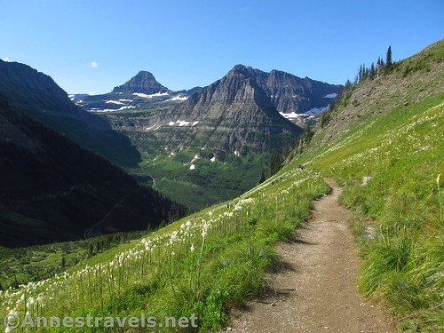 The Highline Trail below Haystack Pass, Glacier National Park, Montana