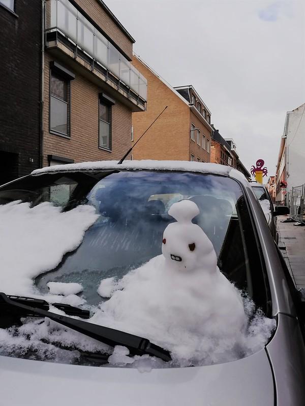 Nieve en Lovaina 6
