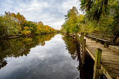 Fall Along the Tar River