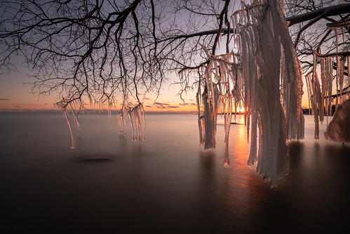 lakeontario canada sunset tree winter ice longexposure cold water high erosion changing weather