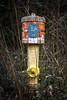 Hydrant im Stauferpark
