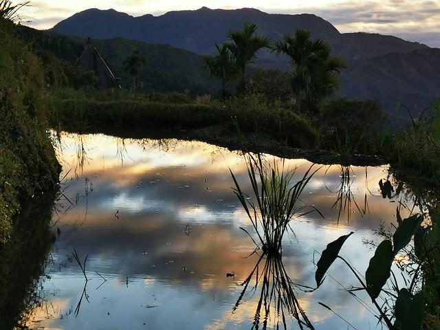 Sunrise over Flooded Rice Field Ifugao Cordillera Administrative Region Philippines Southeast-Asia © Sonnenaufgang über Reisfeldern Mayoyao Proper Cordilleras Philippinen Südost-Asien ©
