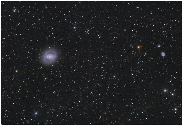 Double ring galaxy M94 and distorted NGC4618, best seen full size.