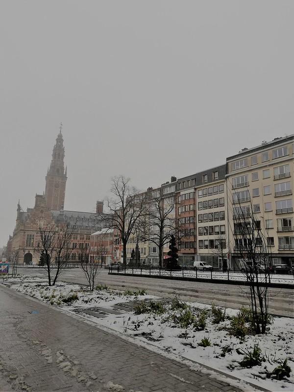 Nieve en Lovaina 5