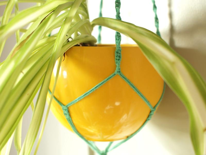 Macramé plant hanger close up