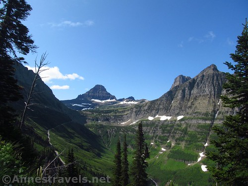 Looking back from one of the more wooded sections of the Highline Trail, Glacier National Park, Montana