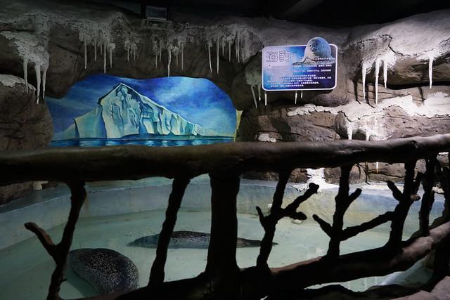 2017 CCA Investigation into Nanchang Ocean Park