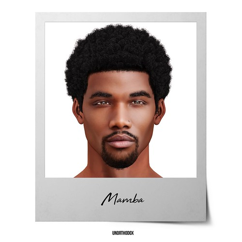 Mamba Hair, Eyebrow & Goatee