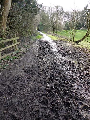A Pathway Not Taken