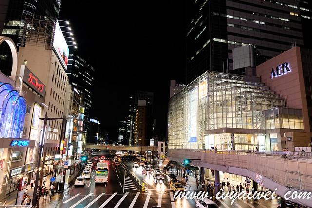 Sendai (61)