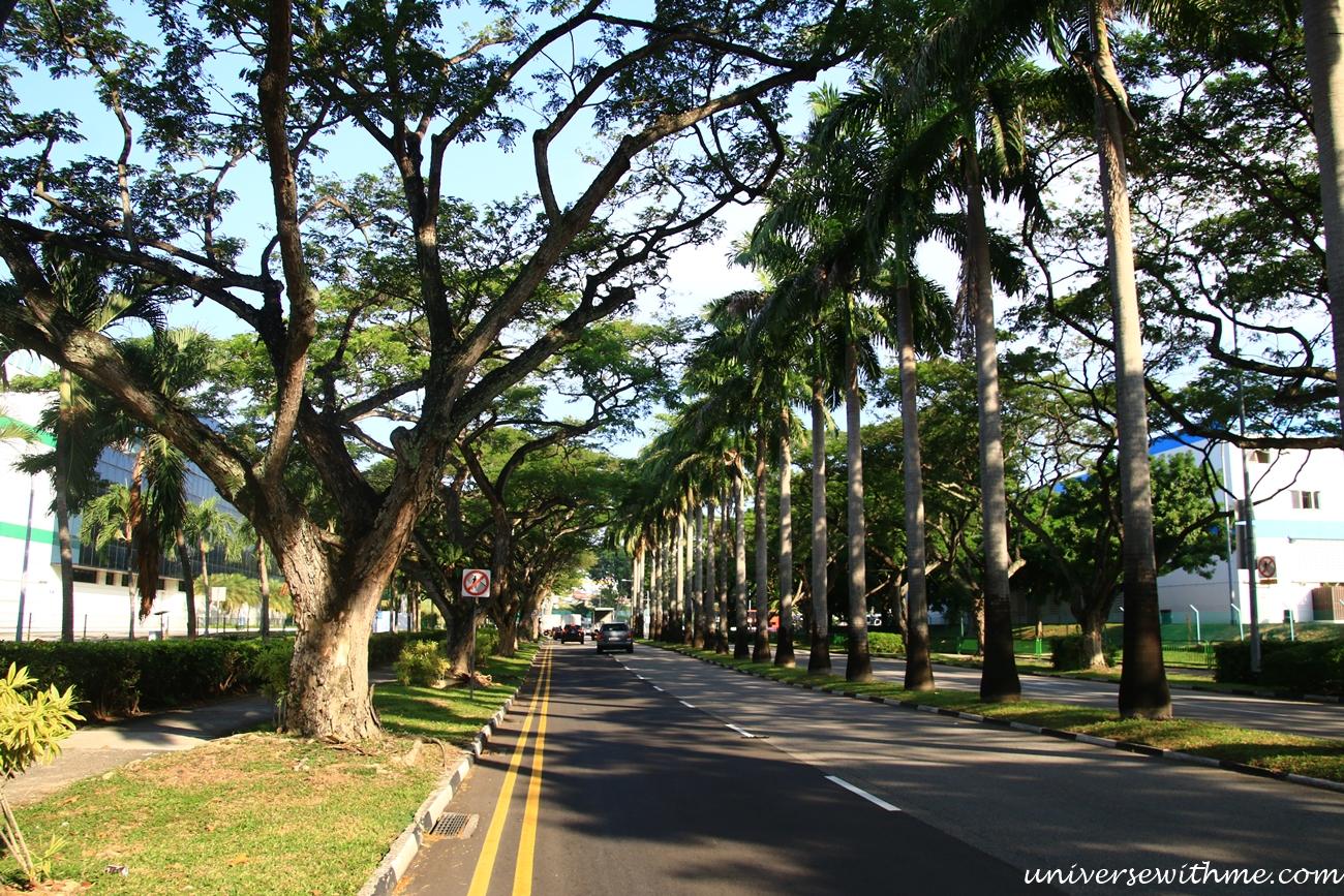 Singapore Trip_042