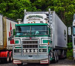Churchill #outbacktruckers #kenworthaustralia #kenworth #kenworthtrucks #brownandhurley #roadtrainsaustralia #trucks #trucking #oldskool #k100 #freight #fridgevan #market #cummins #bdouble #bigrigs #heavyhaulage #transport #cabover #australia #sunshinecoa