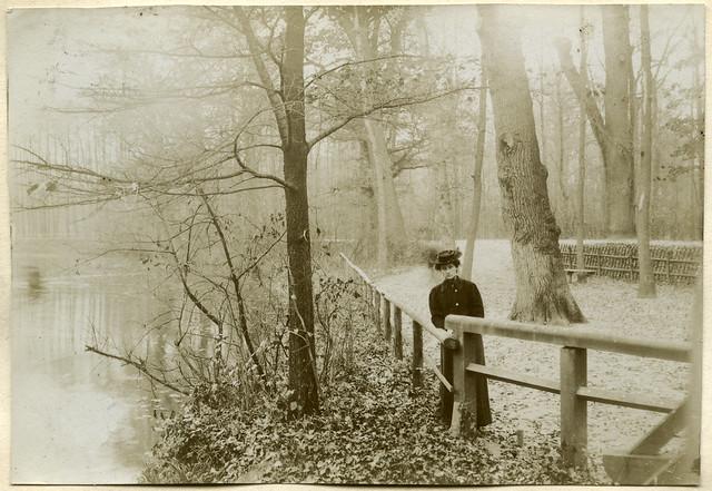 ArchivTappenV387 Herbst im Nonnenholz, Leipzig, 1905