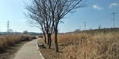 공릉천 산책길