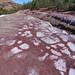 Meteorización de antiguos relaves mineros - Zarandas (Faja Pirítica Ibérica, Cuenca Minera de Riotinto, Nerva, Huelva, España) - 01