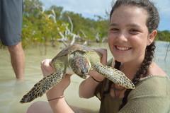 Marine Ecology: Bahamas