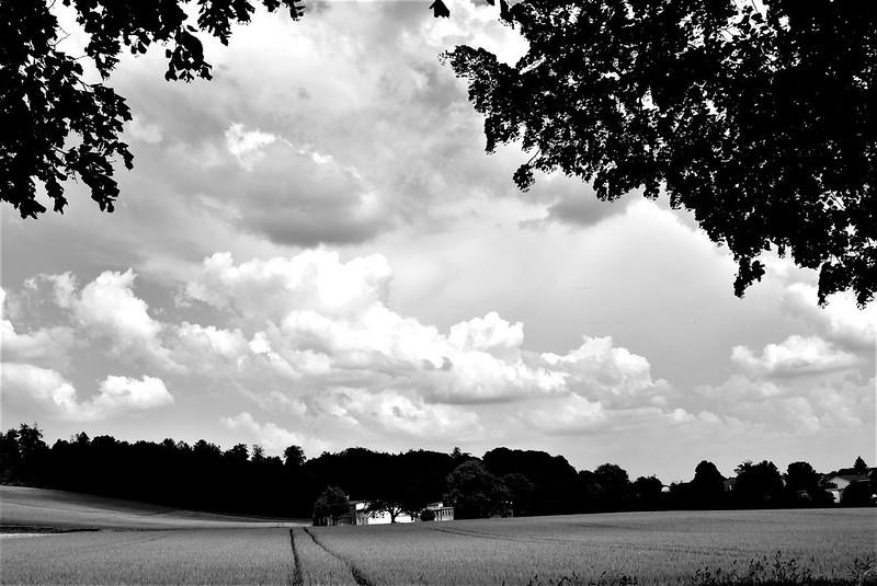 Clouds 04.06 (1)