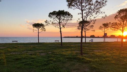 sunset street trees sea sun relax glyfada iphone8plus