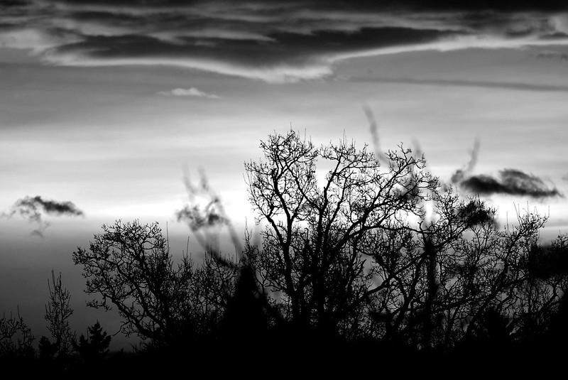 Sunrise 23.11 (3)