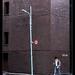 14ème Jour / 14th day - Au coin de la rue / At the street corner - Tokyo