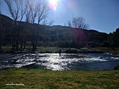 Mañana de pesca 059 -