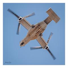 USMC Osprey