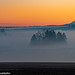 Morning Winter  fog in the Willamette valley.