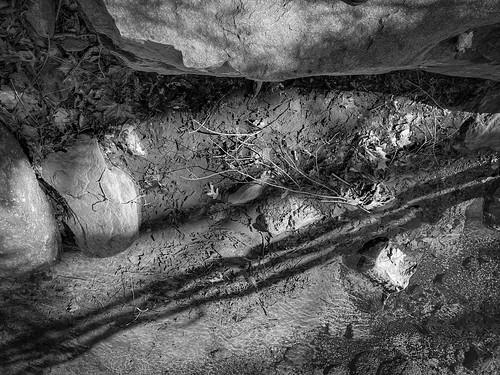 stream brook mountainstream shallow castshadows boulder mud montreat northcarolina westernnorthcarolina blackandwhite monochrome monochromatic winterlandscape appleiphone11