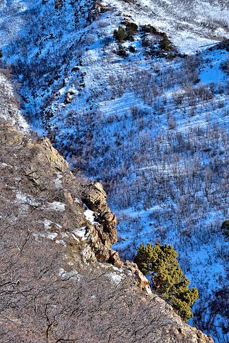 eechillington nikond7500 viewnxi corelpaintshoppro hiking utah saltlakecity mountolympus nature landscape