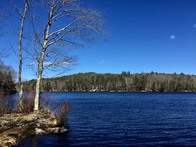 the Blue of Maine