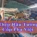 Thép râu tường của Cốp Pha Việt tại sao được ưu chuộng