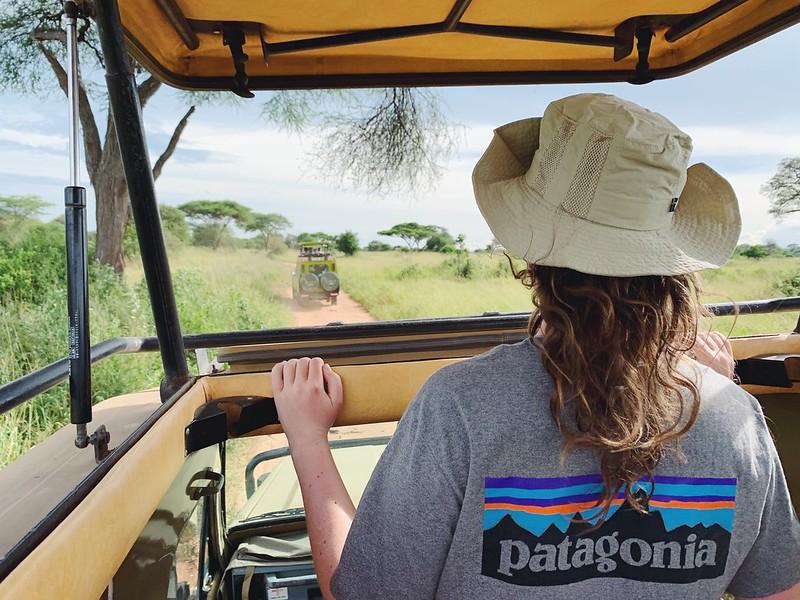 Tansania safari matkablogi