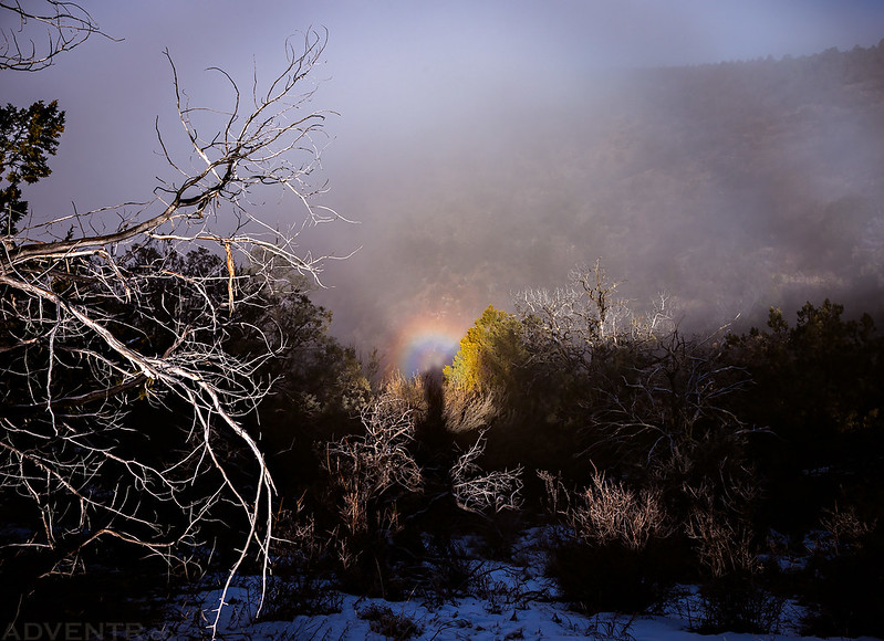 Brocken Spectre #4