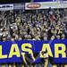 Napoli, Cagliari, Sassuolo: nuovo tour de force per l'Hellas Verona