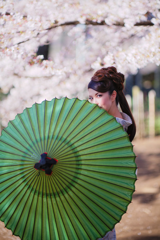 Cherry blossoms and portrait