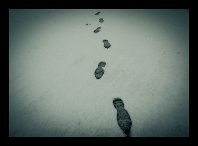 Do not seek to follow in the footsteps of the wise...