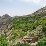 Oman-2014-0105-113252