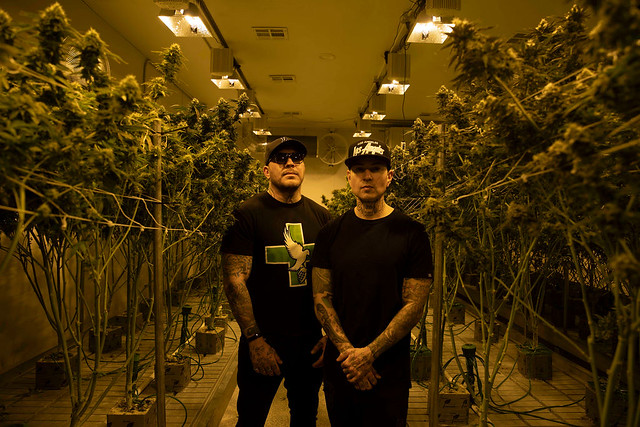 Hollywood Undead Dish on Dove & Grenade Industries and Their Transition into Cannabis