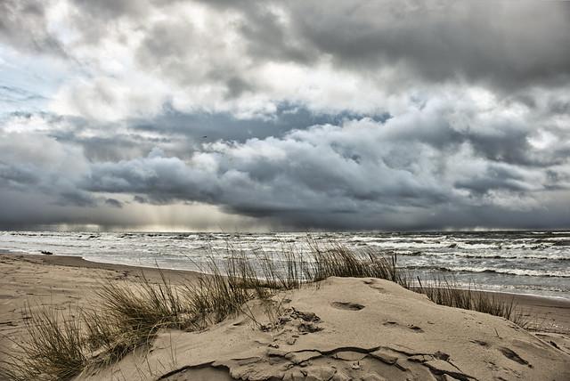 Seashore. (Feb 27, 2020) (Explored Mar, 2020)