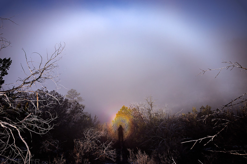 Brocken Spectre & Fogbow