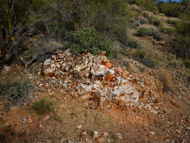 White Rock Vein SR602226