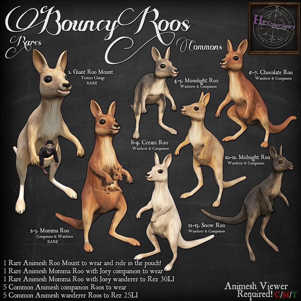 HEXtraordinary: Bouncy Roos @The ARCADE
